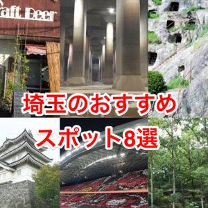 【埼玉愛】観光地が少ない埼玉の個人的「おすすめスポット8選+番外編」
