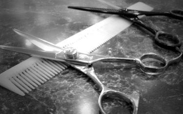 【朗報!?】髪の毛を再生させる治療が近い将来できるかも