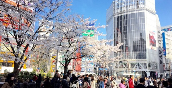 おはよう、渋谷