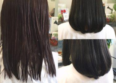 【上質ヘアカラー】暗髪ネイビーアッシュはブリーチなしで透明感&ツヤ感を手に入れる