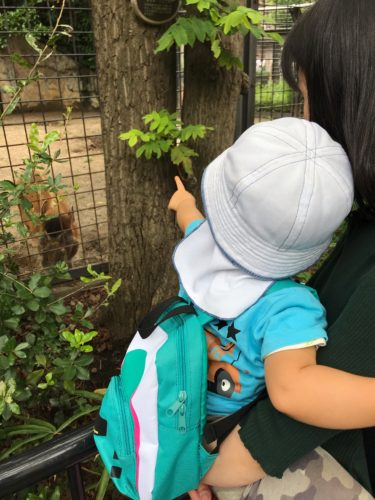 【美容師土日休み】家族で上野動物園