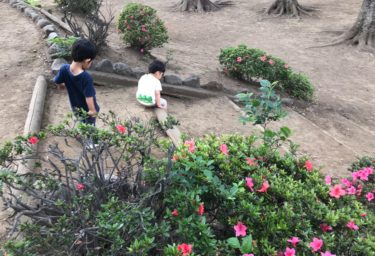 公園で保育園の友達と合った息子。